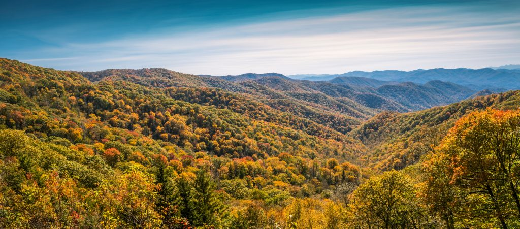 View of The Great Smokey Mountains.