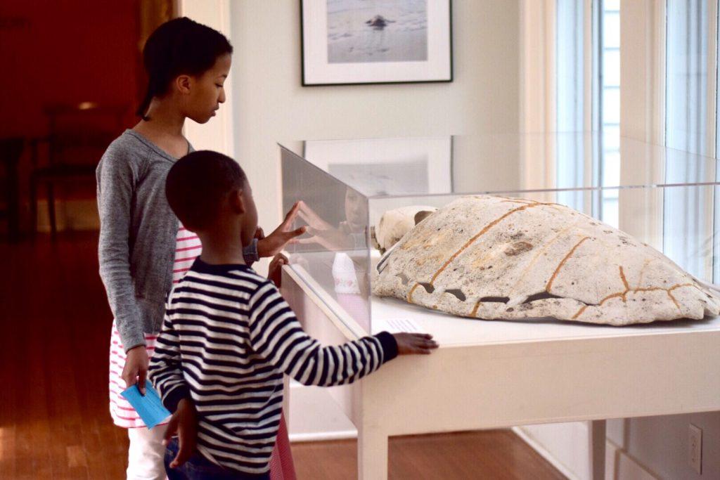 Children observing marine life fossils inside of Maritime museum.