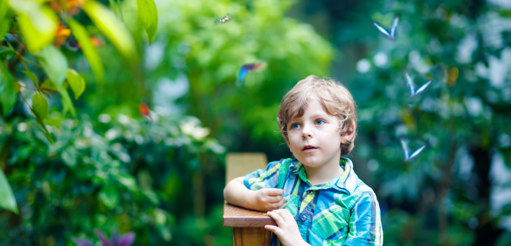 Young boy spending time in a butterfly garden Oak Island, North Carolina.